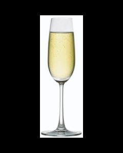 Madison Champagne Glass 7.25oz
